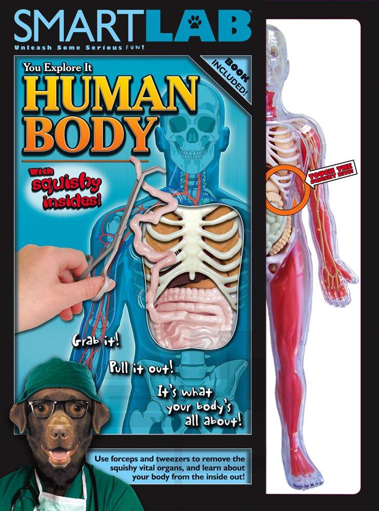 Amazon Smart Lab You Explore It Human Body Model Toys Games