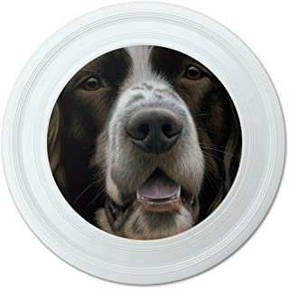 Graphics and More Springer Anglais Chien visage Plan fantaisie 22,9 cm Flying Disc 9 cm Flying Disc