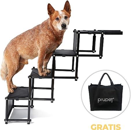 PiuPet® Rampa para Perros Grandes y pequeños - Cargable hasta 80 kg - Utilizable para Todos los vehículos - Escaleras para Perros Plegables: Amazon.es: Productos para mascotas