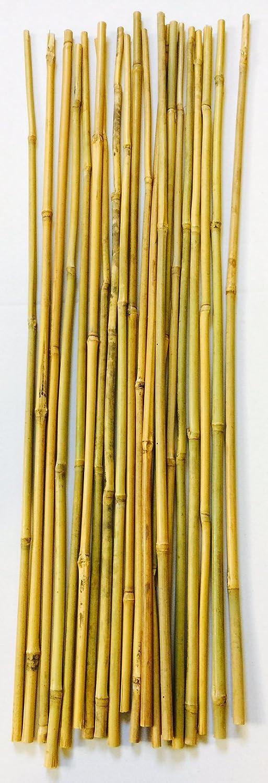 Mendi 20 Varillas de bambú. 60 cm / 6-8 mm diámetro