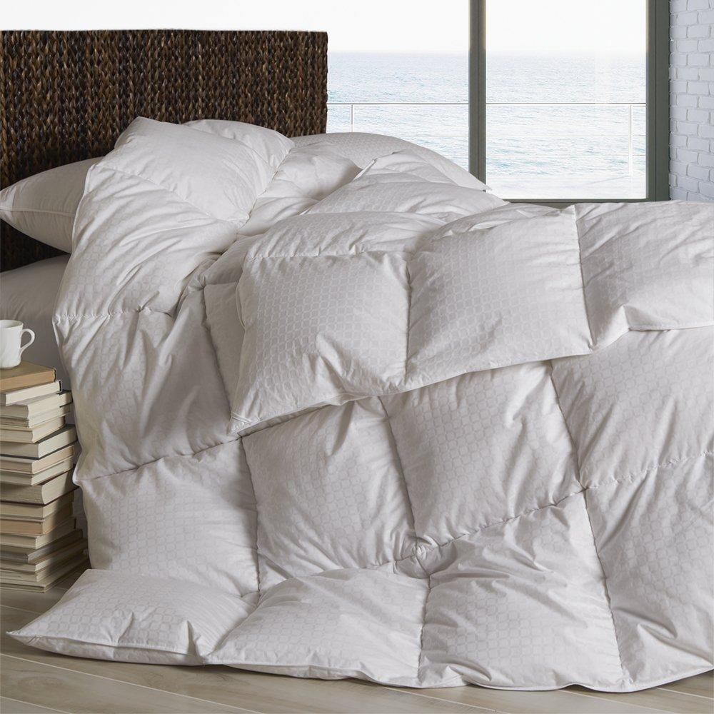 Dreamstead by Cuddledown Modern Goose Down-Alternative Hypoallergenic Duvet Comforter, Twin Warm, Windowpane