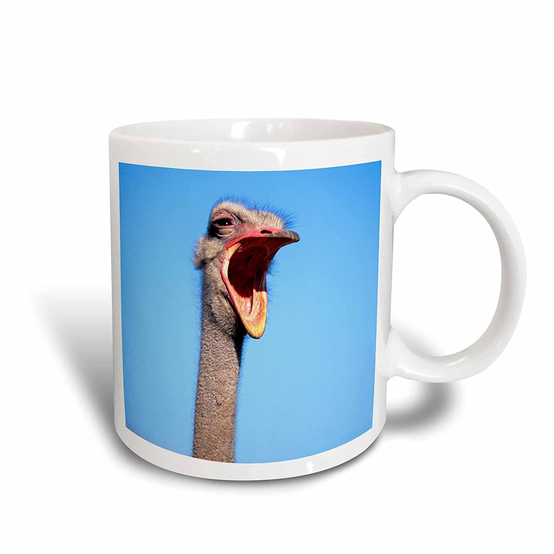 3dRose 205428/_1AnAn Ostrich showing aggression Ceramic Mug 11 oz White