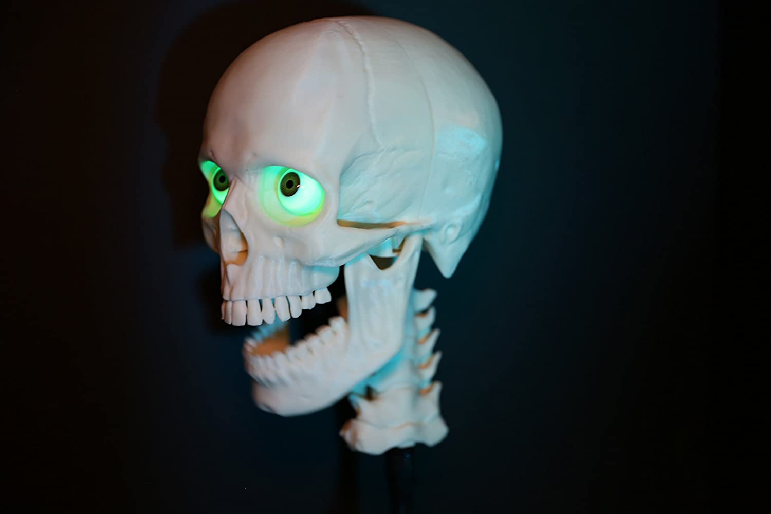Amazon.com: Animatronic programmable 3-Axis talking skull from ...