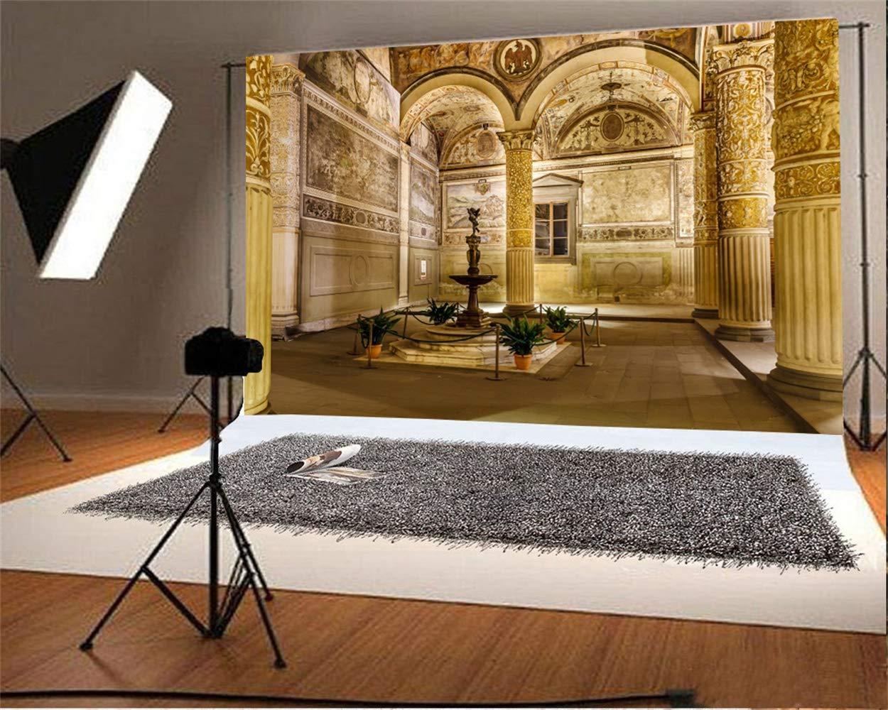 10x7ft Luxurious Interior of Palazzo Vecchio Vinyl Photography Background Antique European Massive Romanesq Historical Building Backdrop Cultural Relics Scenic Spot Studio Props
