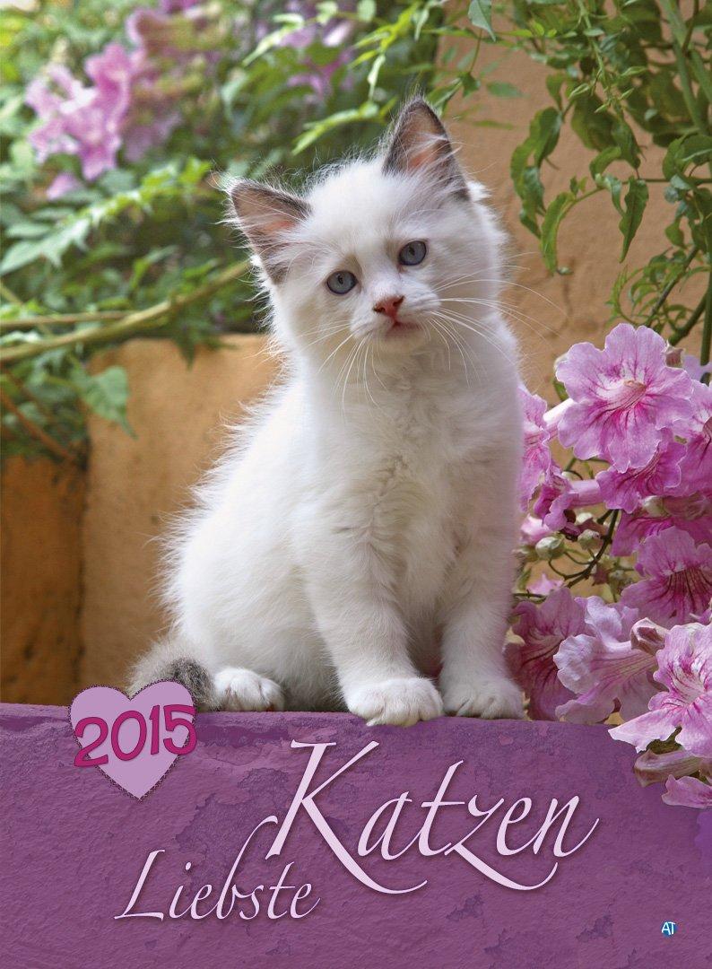 Liebste Katzen 2015
