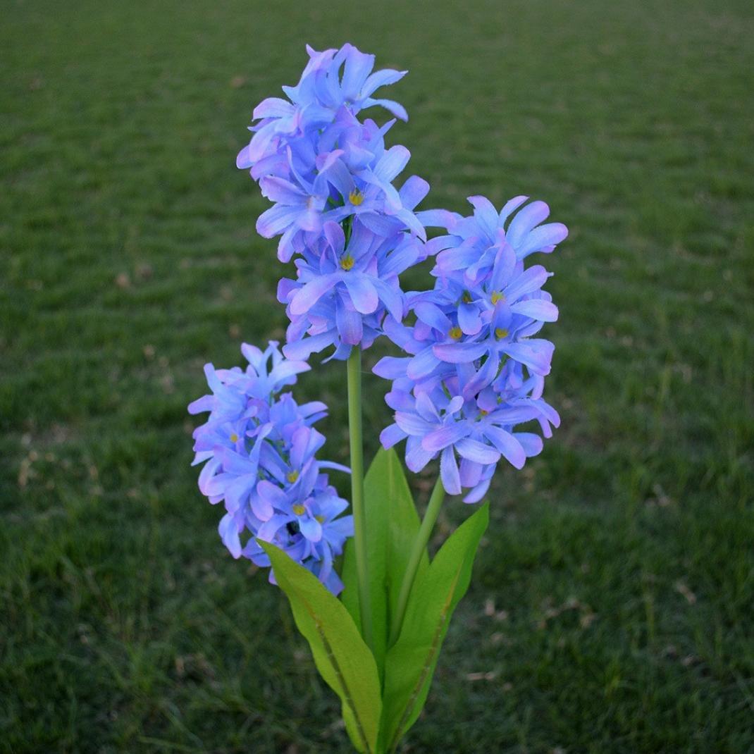 Ecosin 3 Head Solar LED Decorative Outdoor Lawn Lamp 3 Head hyacinth Light Solar Energy Flower Light (Purple)