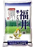 【精米】福井県 白米 コシヒカリ 5kg 平成28年産