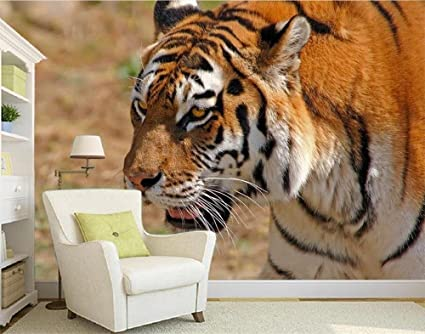 Sykdybz 3d Wallpaper Custom Photo Wall Paper Hd Tiger Photography