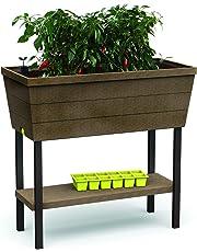 Keter - Mini huerto en casa Urban Bloomer con base para cultivo. Color marrón