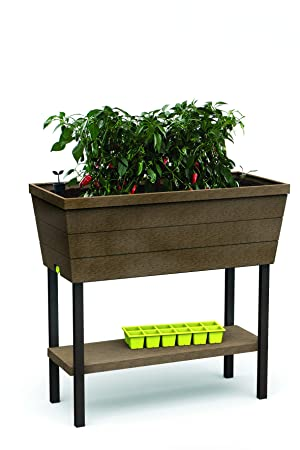 Keter - Mini huerto en casa Urban Bloomer con base para cultivo, Color marrón: Amazon.es: Jardín