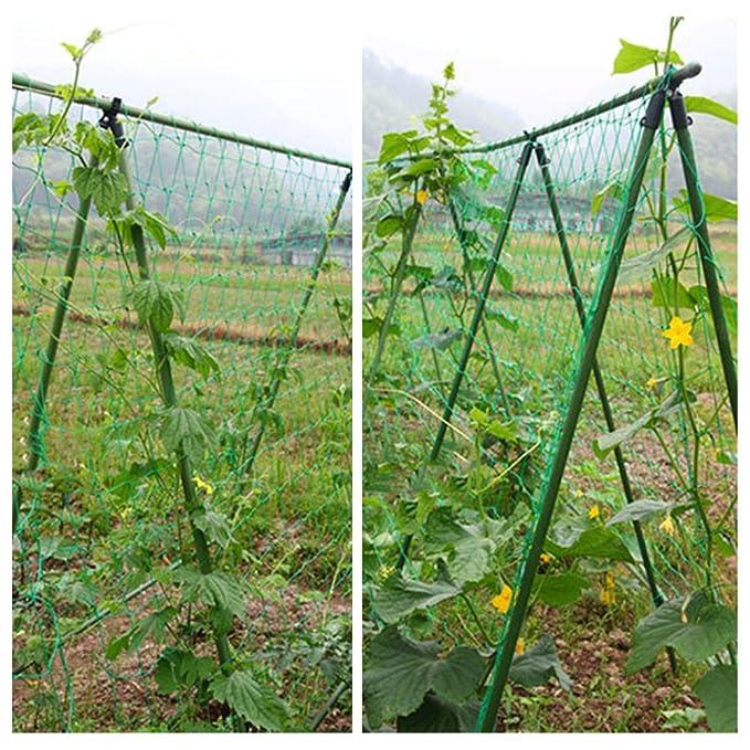 Malla de jardín Nylon malla de celosía, escalada Vine Net para ...