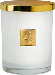 product image for Dianne's Custom Candles Luxury Highly Fragranced Holiday Candle - 9 oz (Peppermintini)