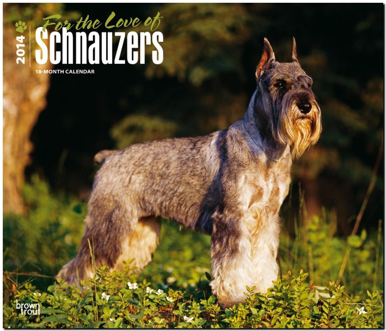 schnauzers-for-the-love-of-2014-schnauzer-original-browntrout-kalender-deluxe-mehrsprachig-kalender