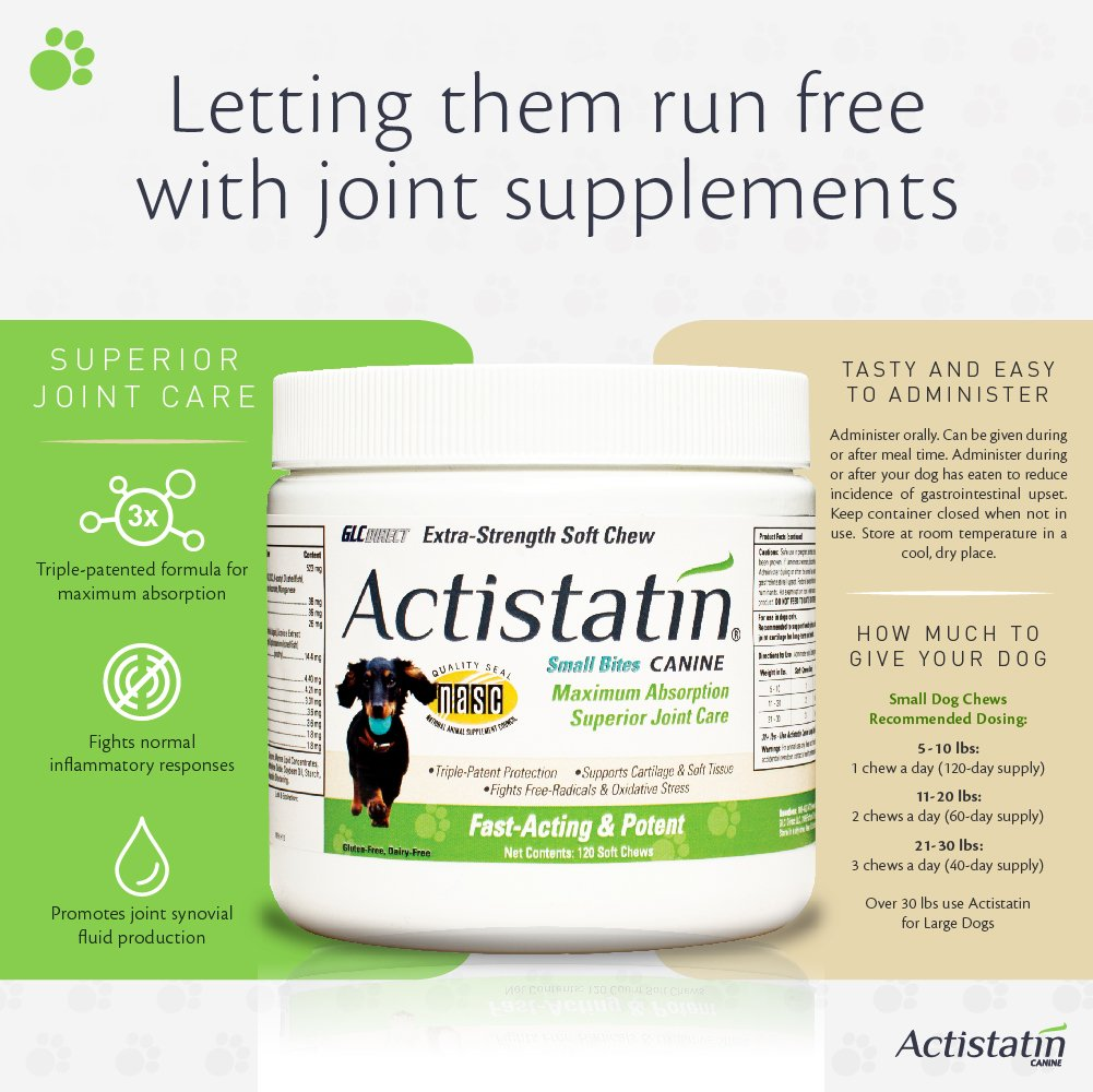 Actistatin Canine Small Dog Soft Chews, 120ct – Patented Extra-Strength Joint, Cartilage, Soft Tissue Supplement: Glucosamine, Chondroitin, Manganese, MSM, L-Carnitine – High Absorption, Fast Results by Actistatin (Image #2)