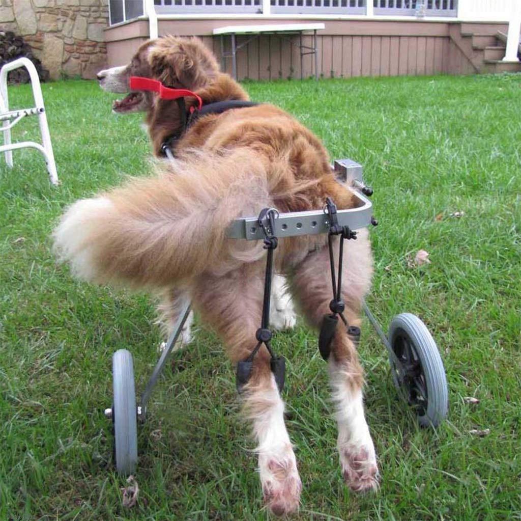 KXBYMX Perro Silla de Ruedas Perro Viejo Andar en Scooter discapacitado Perro con la Pierna Trasera Ejercicio Ejercicio Asiento de Coche para Mascotas ...