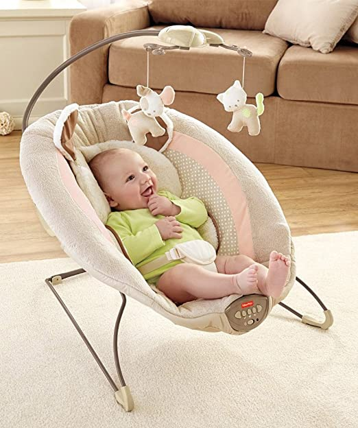 Amazon.com  Fisher-Price My Little Snugapuppy Deluxe Bouncer  Infant Bouncers And Rockers  Baby  sc 1 st  Amazon.com & Amazon.com : Fisher-Price My Little Snugapuppy Deluxe Bouncer ...
