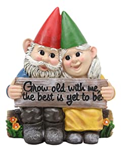 "Ebros Whimsical Mr and Mrs Gnome Hobbit Couple Sitting On Garden Log Statue 6.25"" Tall 'Grow Old with Me The Best is Yet to Be' Gnomes Home Decor Sculpture Figurine"