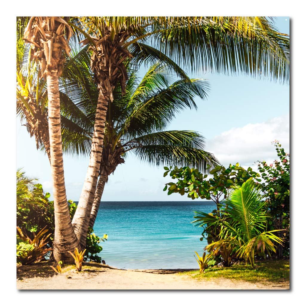 VictoryStore Photo Backdrop: Palm Tree Backdrop 52 Inches by 52 Inches Waterproof Vinyl Banner