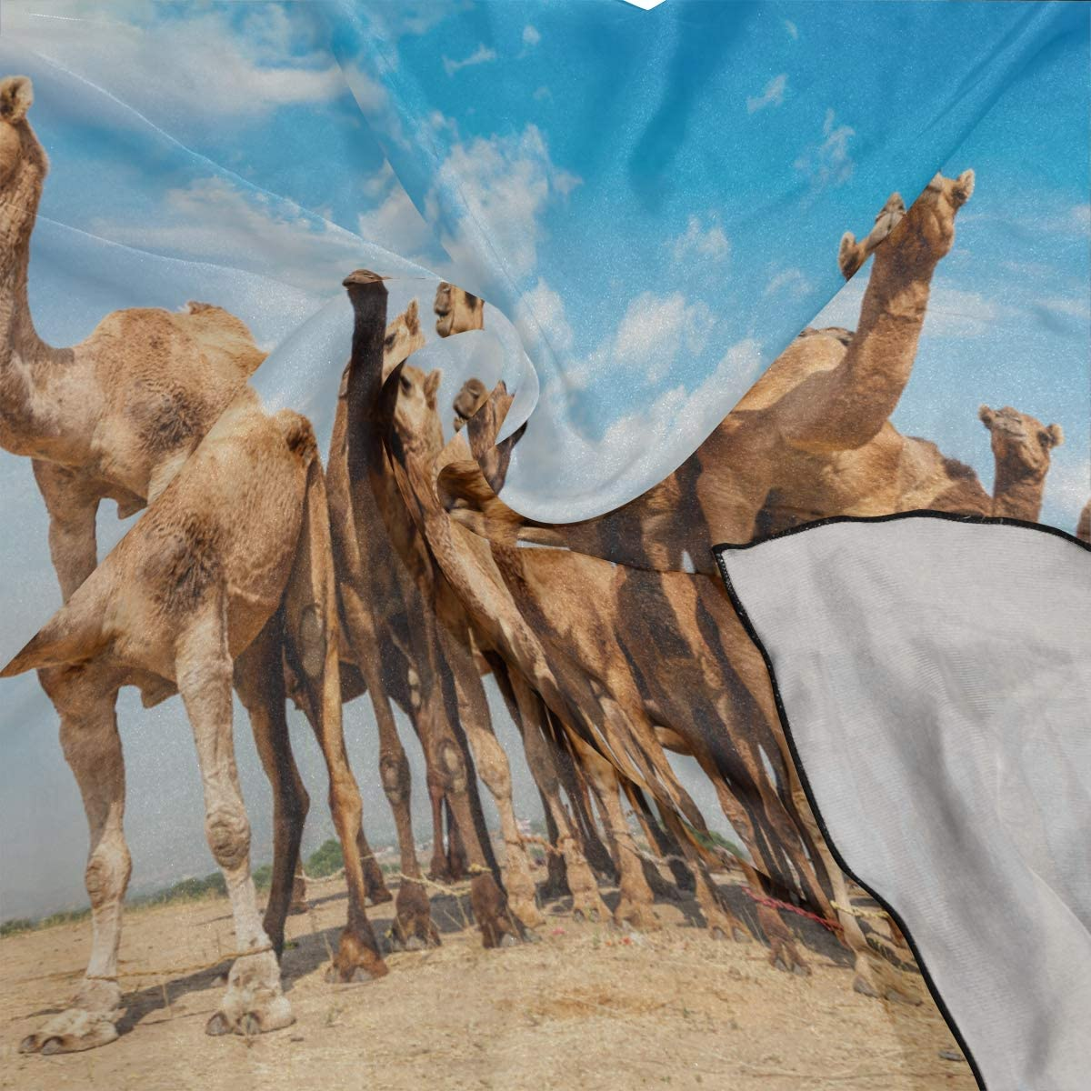Soft Polyester Silk Face Scarf Women Fashion Print Cute Two Camels In Summer Scarves Girls Scarf Neck Extra Long Scarf Multiple Ways Of Wearing Daily Decor