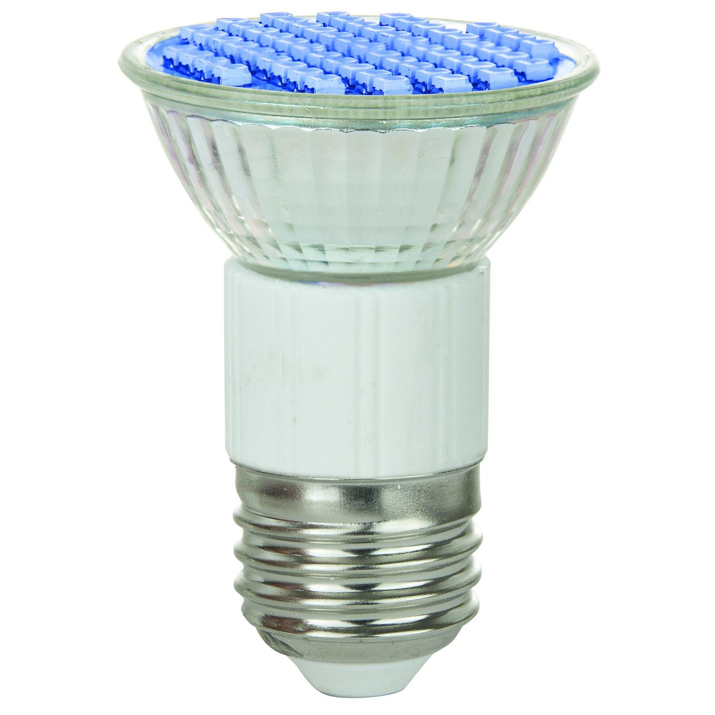 Sunlite 80195-SU JDR/60LED/2.8W/MED/B LED 120-volt 2.8-watt Medium Based JDR Lamp, Blue