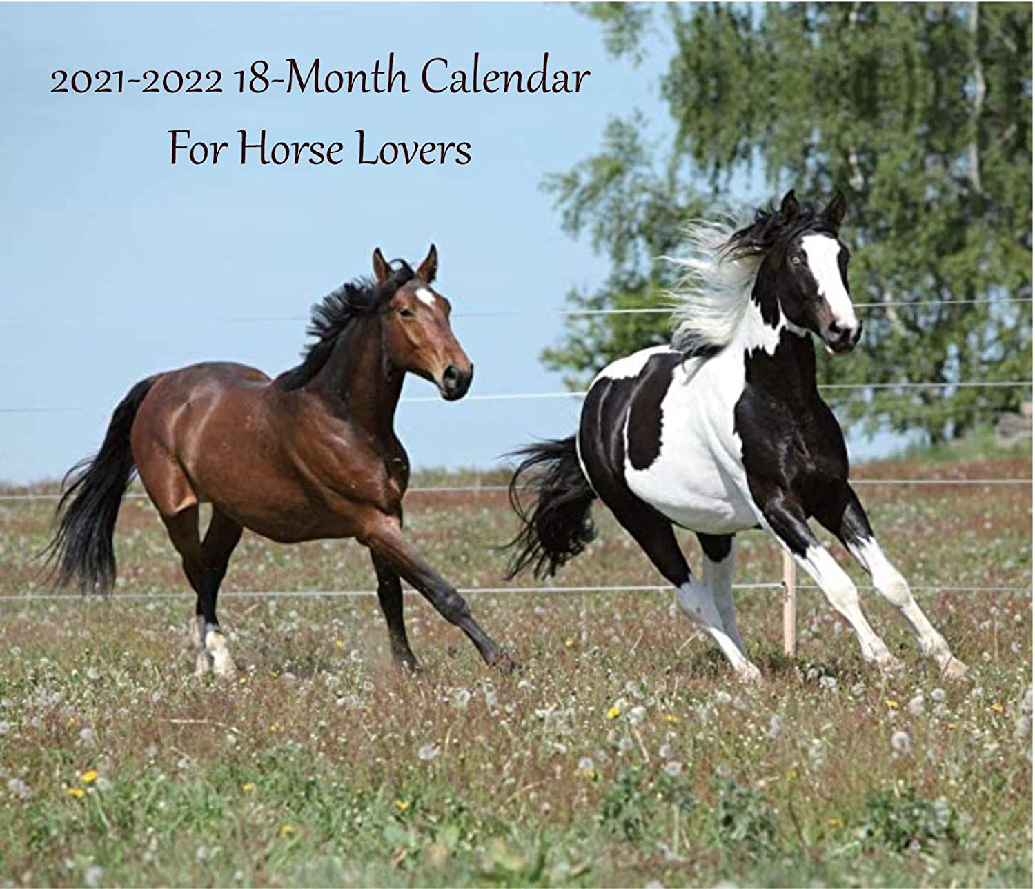 Horse Calendar 2022.2021 2022 Wall Calendar 14 X 12 Canadian And Us Holidays For Horse Lovers Amazon In Electronics