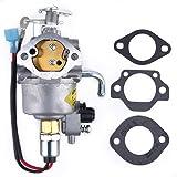 Cummins 5410765 Onan Carburetor Kit, Rebuild Kits - Amazon