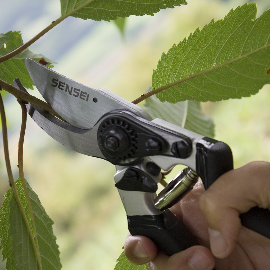 8.5'' Professional Bypass Pruning Shears/Secateurs - Super Sharp Chrome Plated Blades - Durable, Comfortable And Strong by Sensei Tools (Image #4)