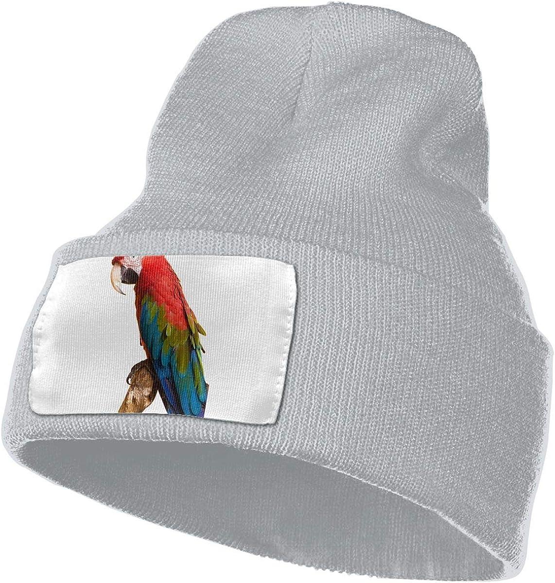 Color Parrot Unisex Fashion Knitted Hat Luxury Hip-Hop Cap