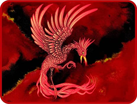 Amazoncom Red Phoenix Bird Etched Vinyl Stained Glass Film - Bird window stickers amazon