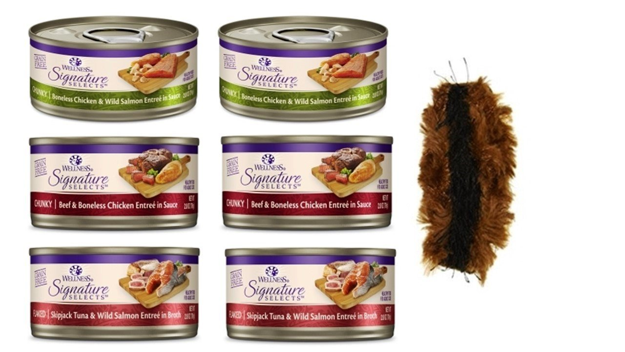 Wellness Signature Selects Grain Free Cat Food 3 Flavor Variety 6 Can Bundle with Toy, (2) each: Flaked Skipjack Tuna Salmon, Chunky Chicken Salmon, Chunky Beef Chicken (2.8 Ounces)