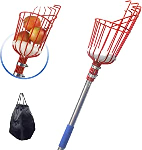 TALITARE Fruit Picker Tool, 5.5FT Stainless Steel Fruit Picker with Big Basket and Pole, Getting Fruits Lemons Apples Guavas Avocados Pears Mangoes