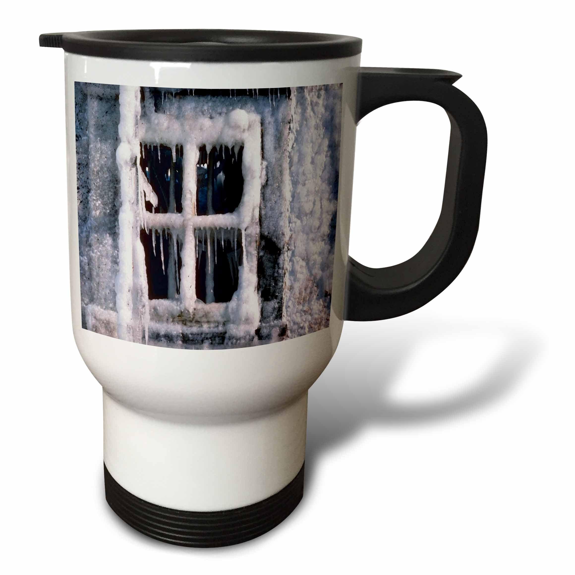 3dRose TDSwhite – Winter Seasonal Nature Photos - Snowed In Window - 14oz Stainless Steel Travel Mug (tm_284914_1)
