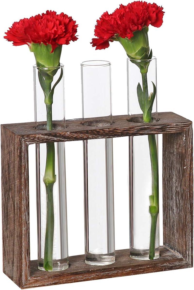 decoraci/ón Gaosheng Soporte para Plantas cafeter/ía jarr/ón de Cristal habitaci/ón Boda jarr/ón Decorativo Recipiente de ensayo con Soporte de Madera para casa Fiesta Mesa