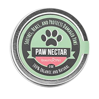 QualityPet Organic 2 oz Dog Paw Balm