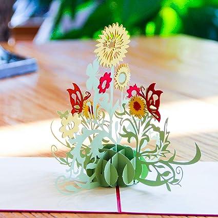 Amazon.com: Paper Spiritz set navideño de tarjeta de ...