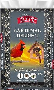 Valley Splendor Elite Cardinal Delight