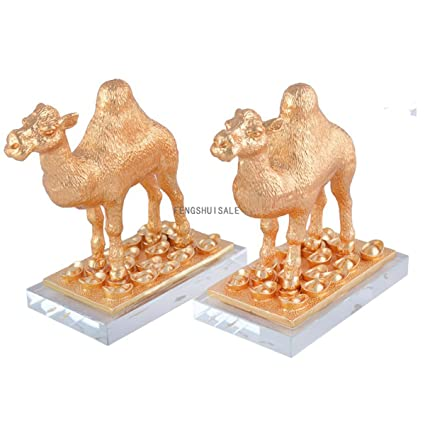 Amazon.com: Par de oro camello corriente de efectivo ...