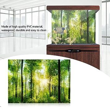Fdit decoración de Acuario Fondo Verde Bosque Reptil HD Papel Pintado Efecto 3D Pegatina de Pared para Acuario: Amazon.es: Hogar
