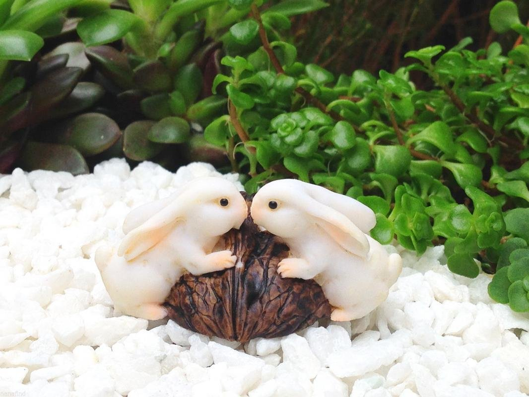 My Fairy Gardens Miniature - Rabbit Bunny Rabbits Kissing on Walnut - Mini Dollhouse Supply Expressions