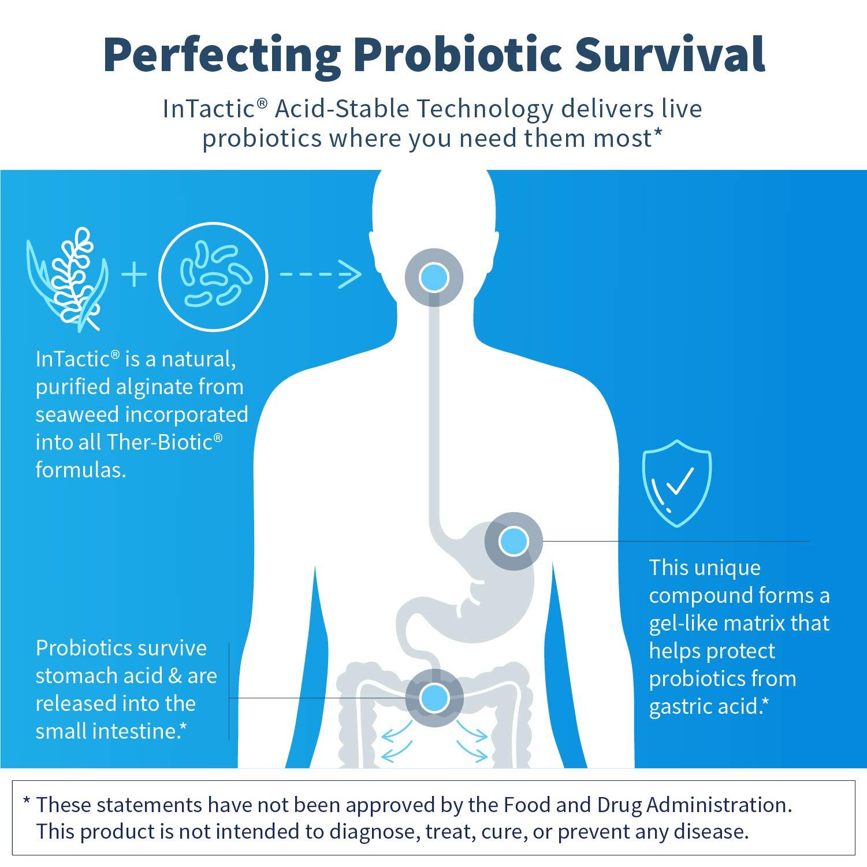 Klaire Labs Ther-Biotic Complete Probiotic - 25 Billion High CFU Blend, The Original Hypoallergenic Probiotic for Men & Women, Dairy-Free (60 Capsules) by Klaire Labs (Image #3)