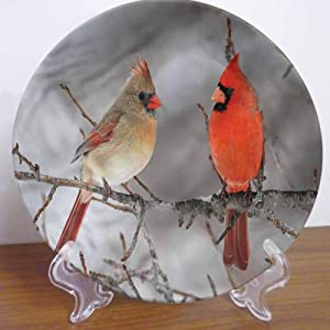 LCGGDB 8 Inch Bird Pattern Decorative Ceramic Wall Plate,Northern Cardinal Birds Pair Ceramic Stoneware Decorative Plate for Fine Dining for Upscale Events, Dinner Parties, Weddings, Catering