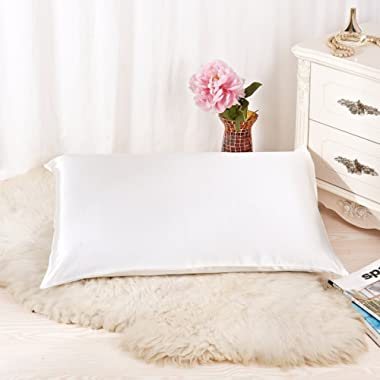 ALASKA BEAR Natural Silk Pillowcase for Hair and Skin 19 Momme 600 Thread Count 100 Percent Hypoallergenic Mulberry Silk Pillow Slip Queen Size with Hidden Zipper (1, Ivory White)