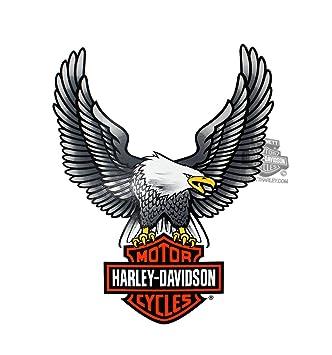 amazon com harley davidson upwing eagle large decal automotive rh amazon com harley davidson eagle logo vector harley davidson eagle logo motorcycle cover