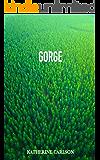 GORGE: a novel of suspense