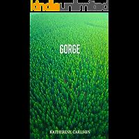 GORGE: a novel of suspense book cover