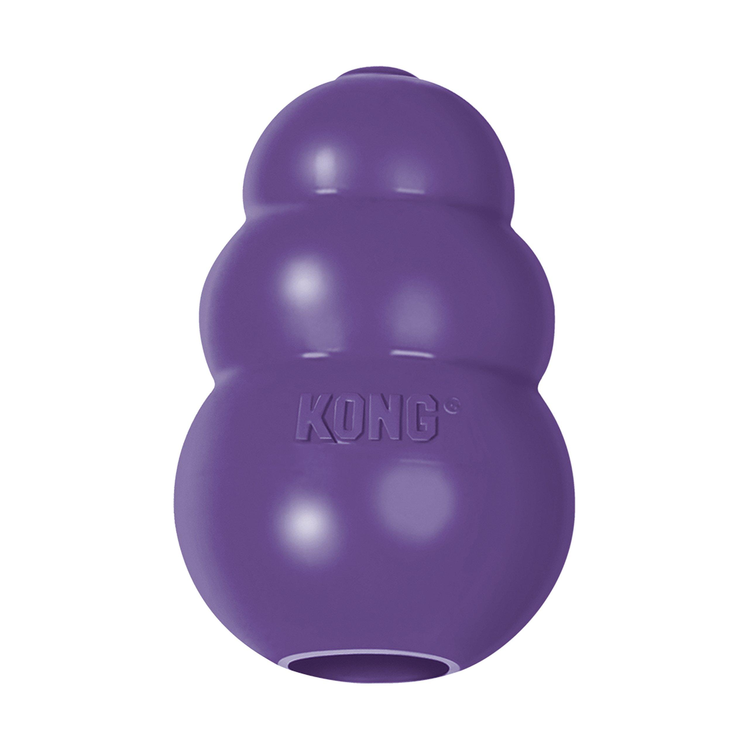 KONG Senior KONG Dog Toy Purple Small