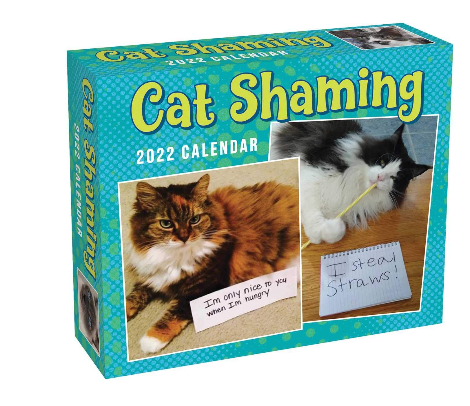 Cat Calendar 2022.Cat Shaming 2022 Day To Day Calendar Andrade Pedro 0050837439863 Amazon Com Books