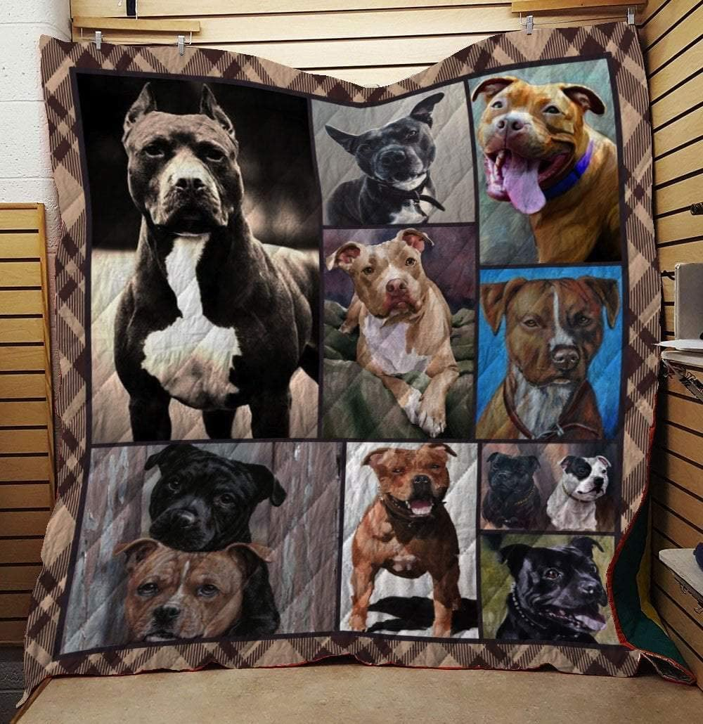 American Pit Bull Terrier Dog Quil | All-Season Quilts Comforters with Reversible Cotton King/Queen/Twin Size | Best Decorative Unique Banklet for Traveling Picnic, Beach Trip, Concert, Home and Gift