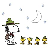 Peanuts Snoopy's Campout Stars Wall