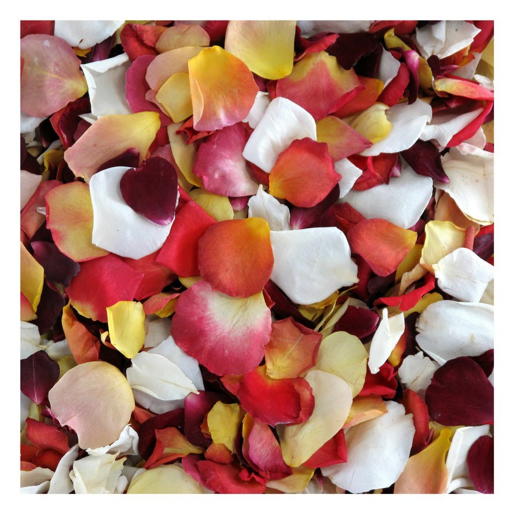Rose Petals 60 cups. Sunset Blend of Rose Petals from Flyboy Naturals. Wedding Decoration. by Flyboy Naturals